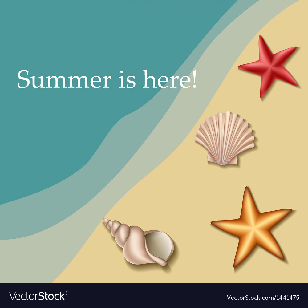 Sea text frame with shells and sea stars vector | Price: 1 Credit (USD $1)