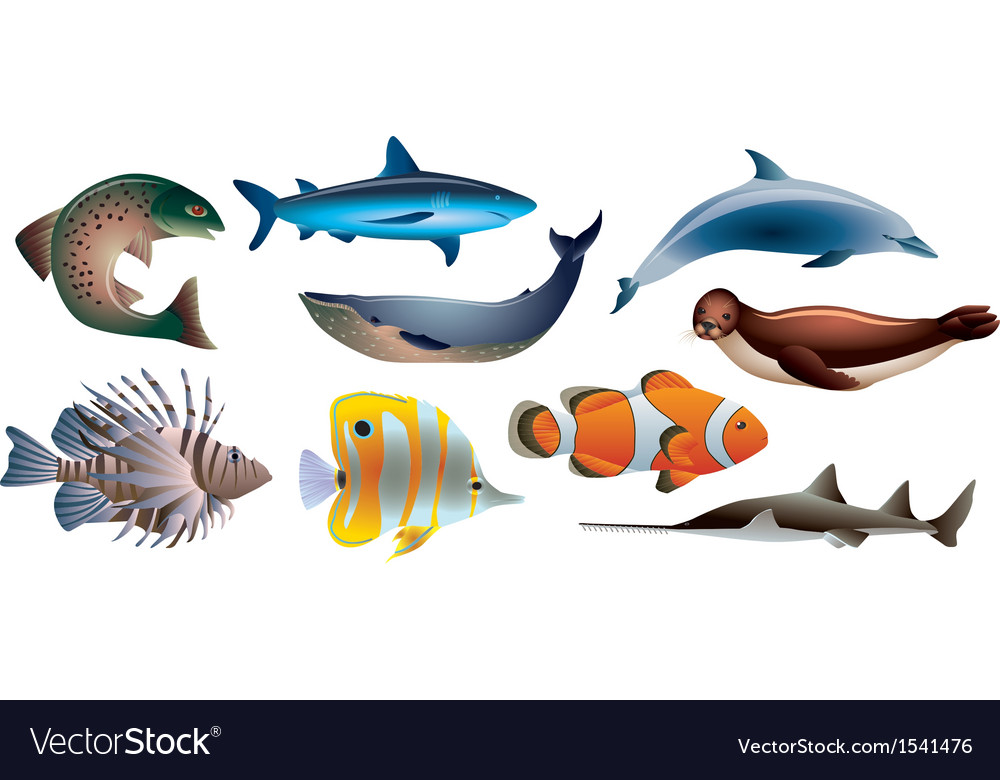 Water animals vector | Price: 1 Credit (USD $1)