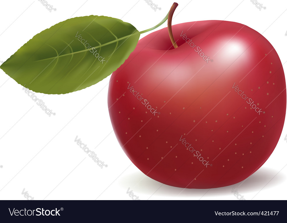 Apple red vector | Price: 1 Credit (USD $1)