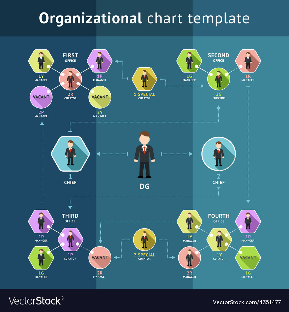 Business organization structure vector | Price: 1 Credit (USD $1)