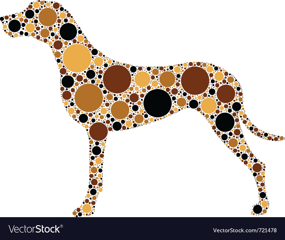 Spotted dog vector | Price: 1 Credit (USD $1)