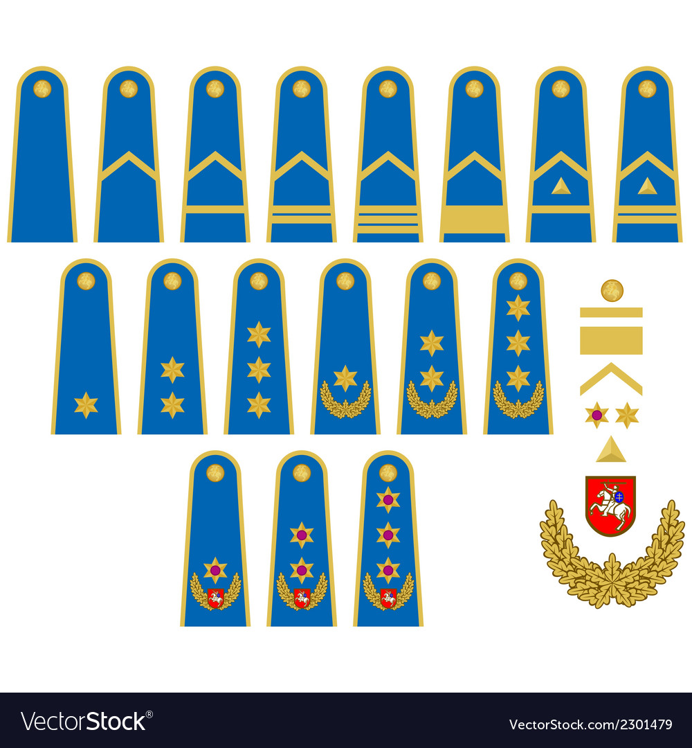Lithuanian air force insignia vector | Price: 1 Credit (USD $1)