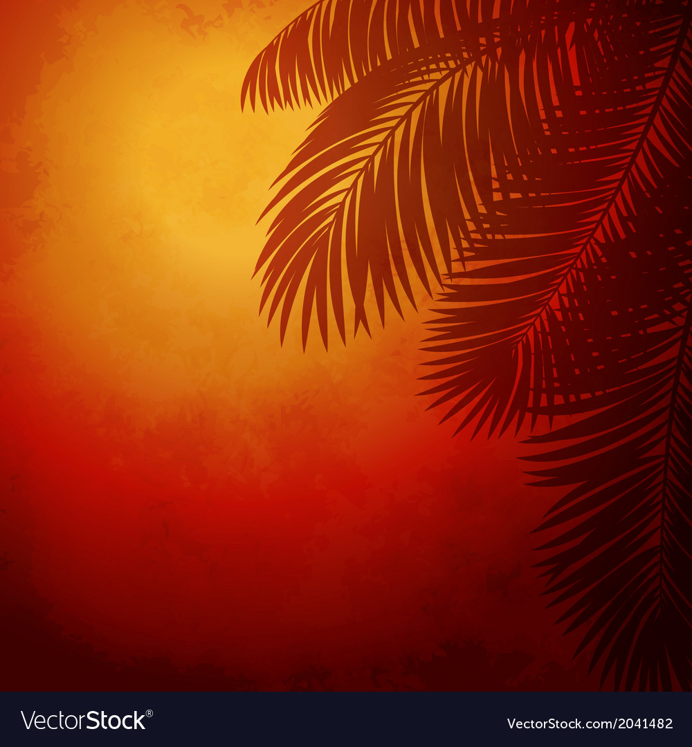Branches of palm trees at sunset vector | Price: 1 Credit (USD $1)