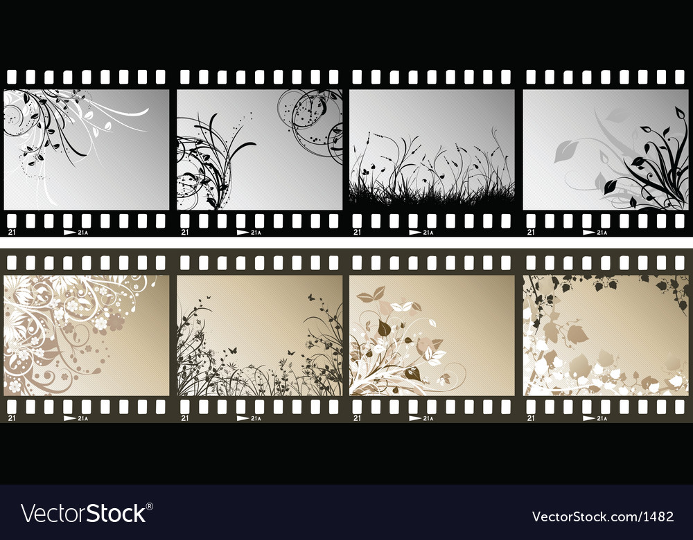 Floral film strips vector | Price: 3 Credit (USD $3)