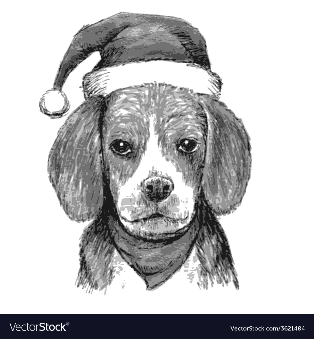Beagle with christmas hat vector | Price: 1 Credit (USD $1)