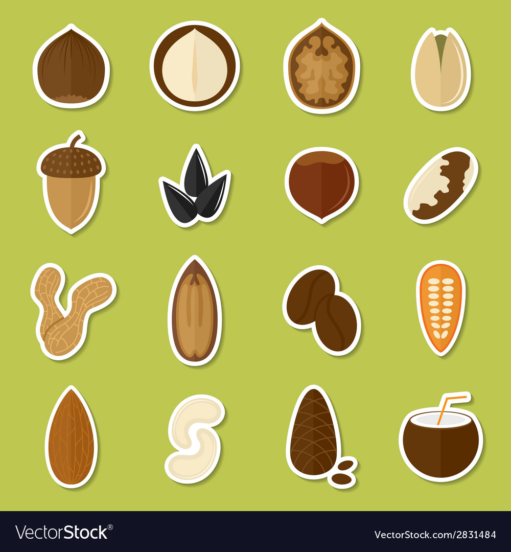 Nuts stickers set vector | Price: 1 Credit (USD $1)