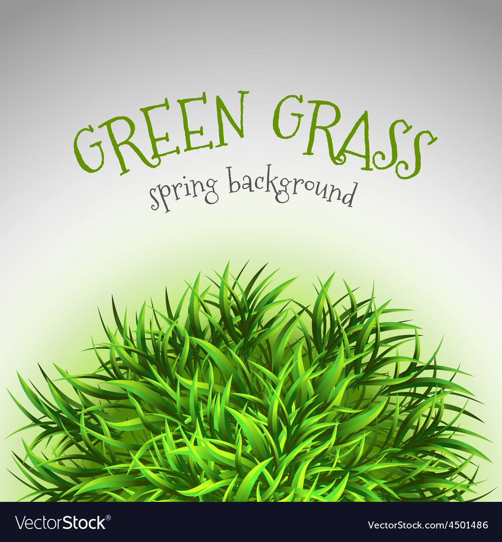 Grass layout vector   Price: 1 Credit (USD $1)