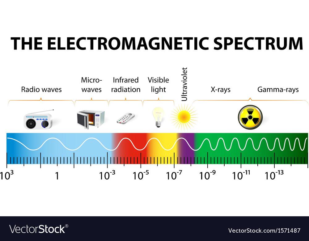 The electromagnetic spectrum diagram vector | Price: 1 Credit (USD $1)
