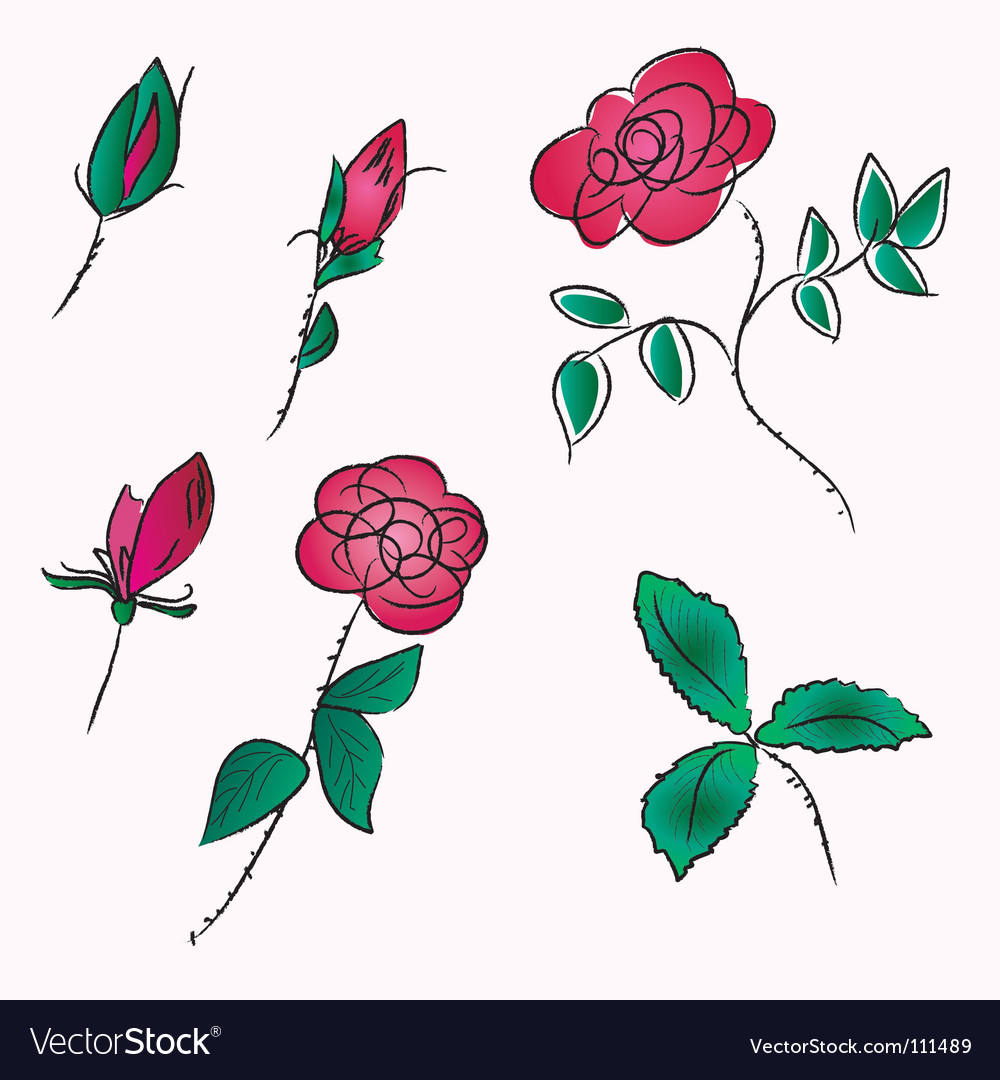Roses sketch vector | Price: 1 Credit (USD $1)