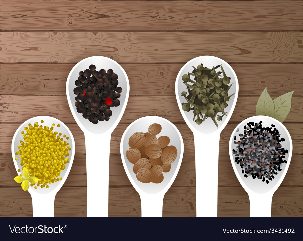 Different spices in spoons vector | Price: 1 Credit (USD $1)