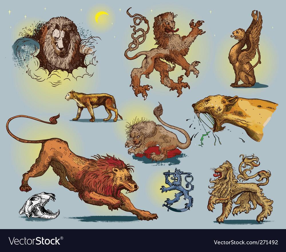 Lions vector | Price: 5 Credit (USD $5)