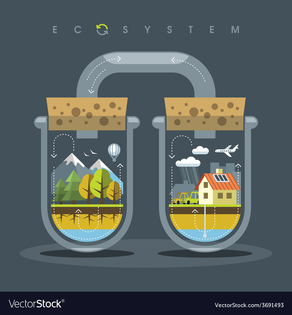 Flat ecosystem vector | Price: 3 Credit (USD $3)
