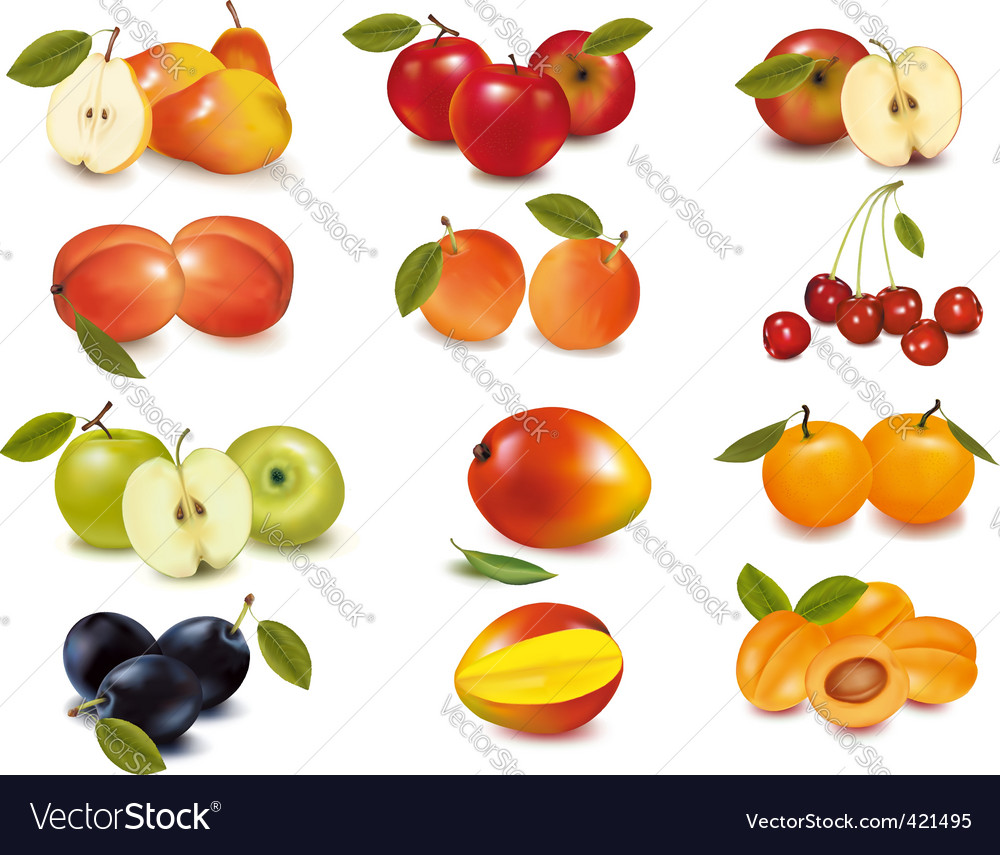 Big group of apples vector