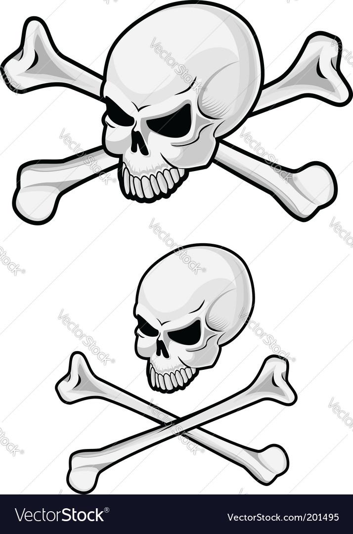 Danger skull vector | Price: 1 Credit (USD $1)