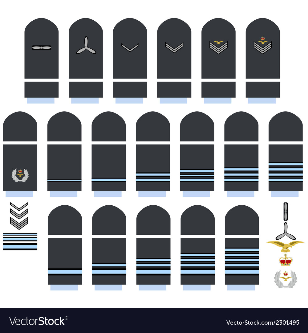 Royal air force insignia vector | Price: 1 Credit (USD $1)