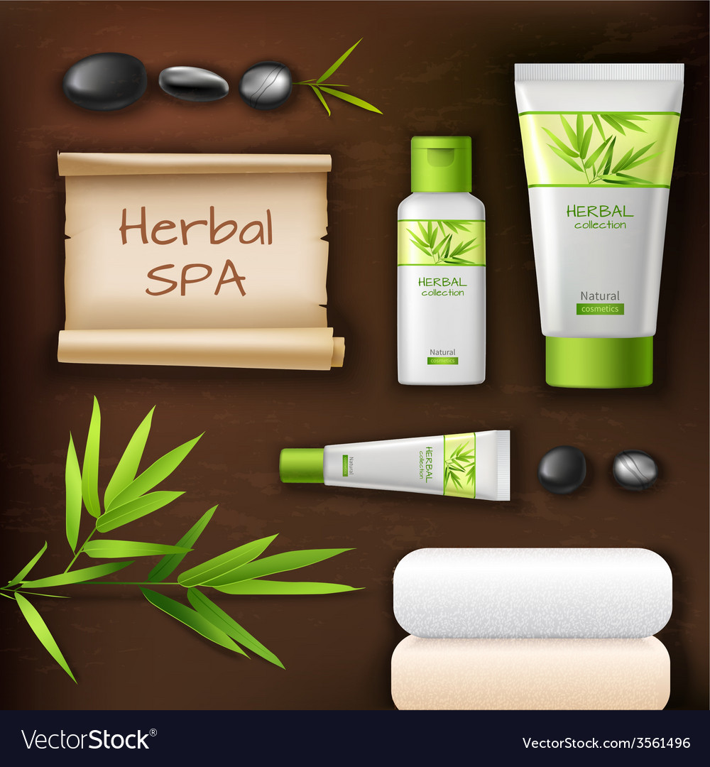 Natural spa cosmetics vector | Price: 1 Credit (USD $1)