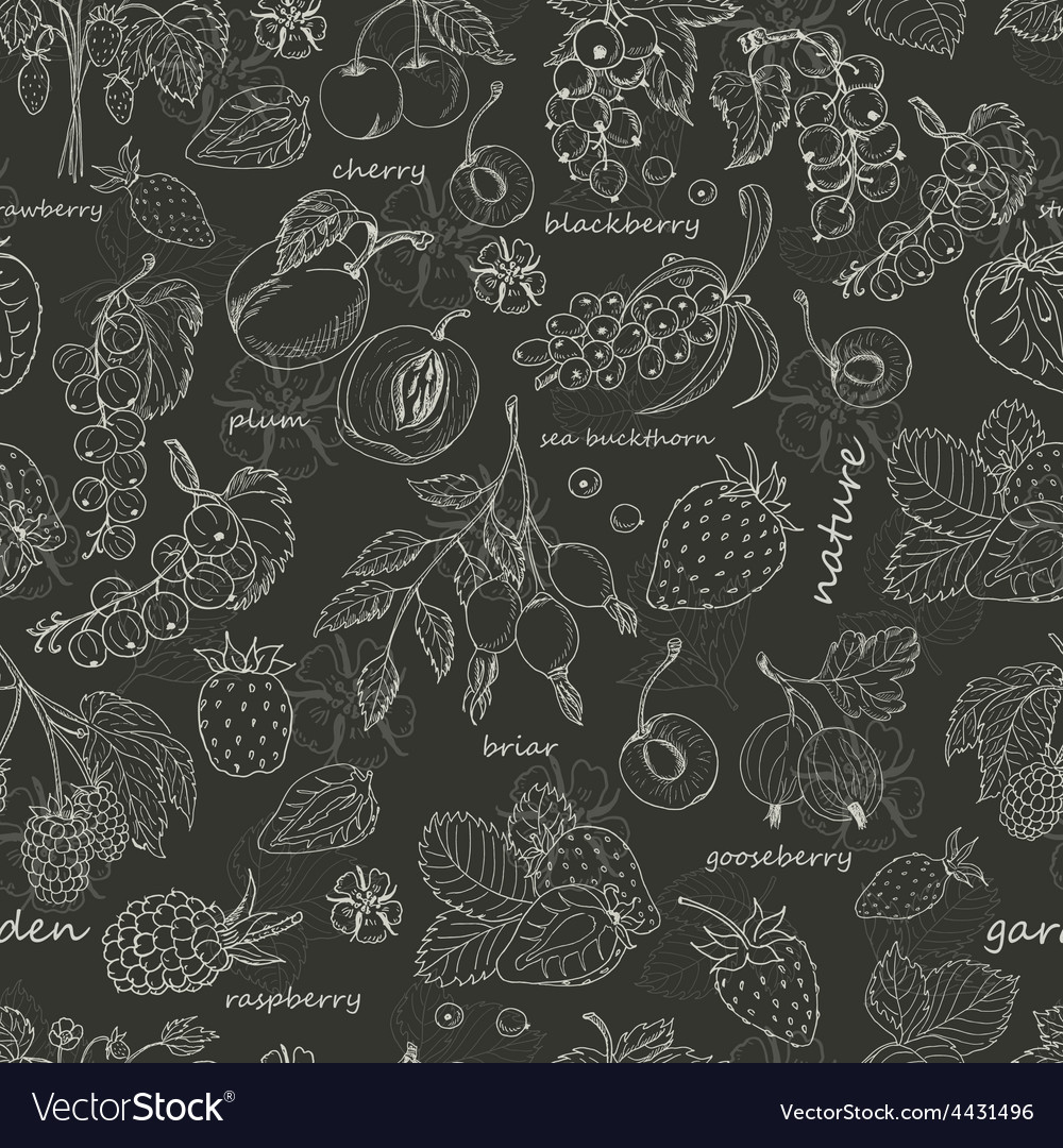 Seamless pattern with berries on dark background vector | Price: 1 Credit (USD $1)