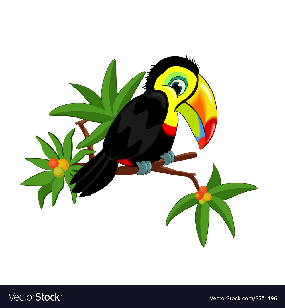 Toucan on branch vector | Price: 1 Credit (USD $1)