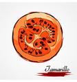 Tamarillo part vector