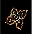 Stylized fire flower on black vector