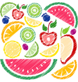 Fruit collection vector