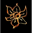 Stylized fire flower on black vector