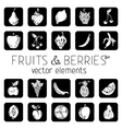 Set of square icons with fruits and berries vector