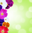 Flower border with bokeh vector