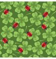 Clover and ladybirds seamless background vector