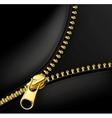 Zipper gold vector