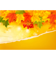Autumn background with colorful leaves and ripped vector