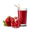 Pomegranate juice glass vector