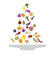 Food over plate vector