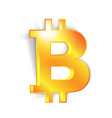 Bitcoin currency signs vector