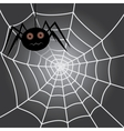 Spider in a cobweb vector