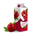 Juice pack pomegranate vector