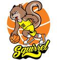 Squirrel basketball mascot vector