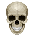 Crystul skull vector