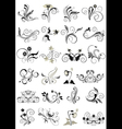 Collection flourishes patterns for design vector