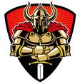 Warrior in armor with sword vector