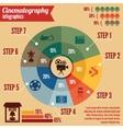 Cinema entertainment business infographics vector