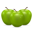 Three green apples with water drops vector