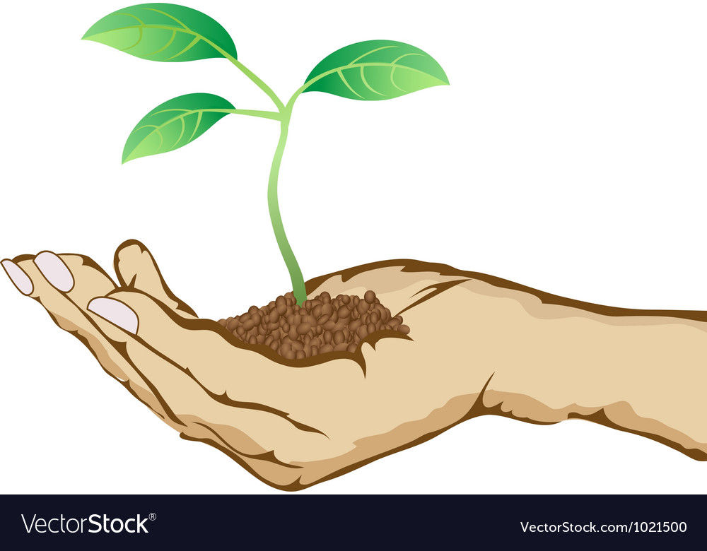 Green plant growing in hand vector | Price: 1 Credit (USD $1)