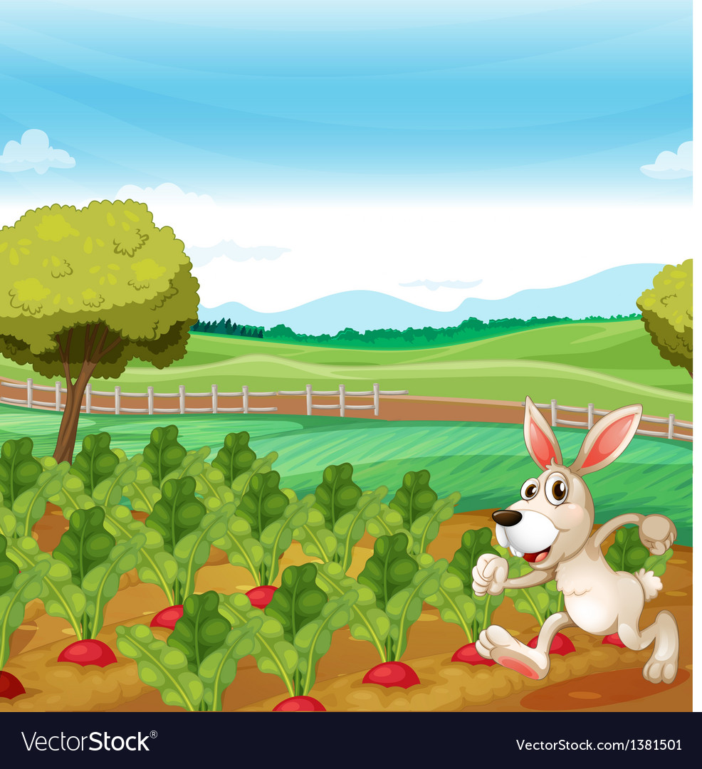 A bunny running in the farm vector | Price: 1 Credit (USD $1)