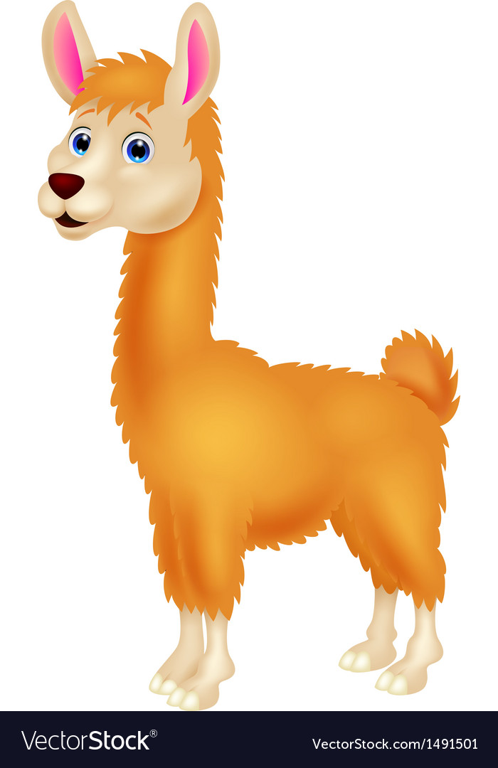 Llama cartoon vector | Price: 1 Credit (USD $1)