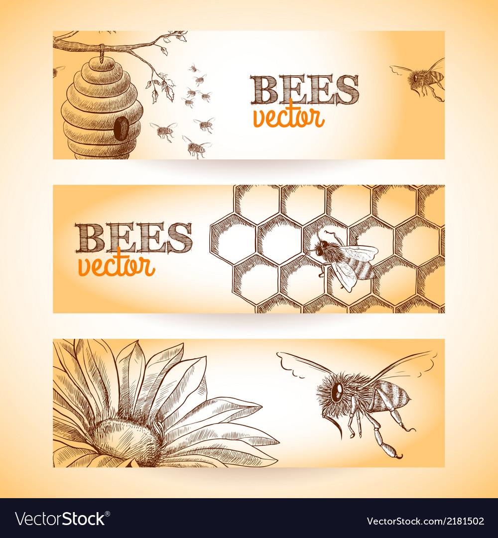 Bee banner sketch vector | Price: 1 Credit (USD $1)