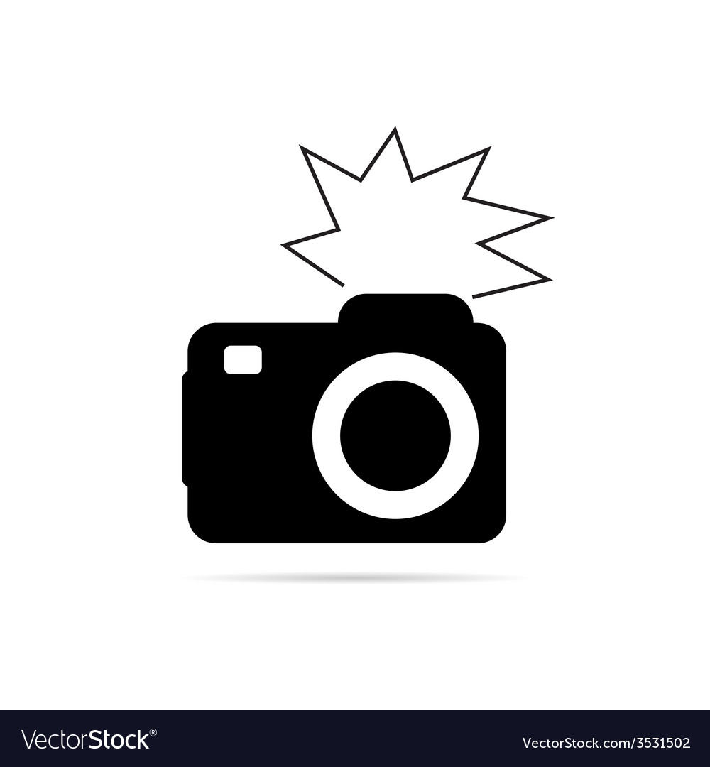 Camera flash black and white vector | Price: 1 Credit (USD $1)