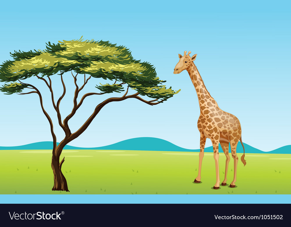 Giraffe by a tree vector | Price: 3 Credit (USD $3)