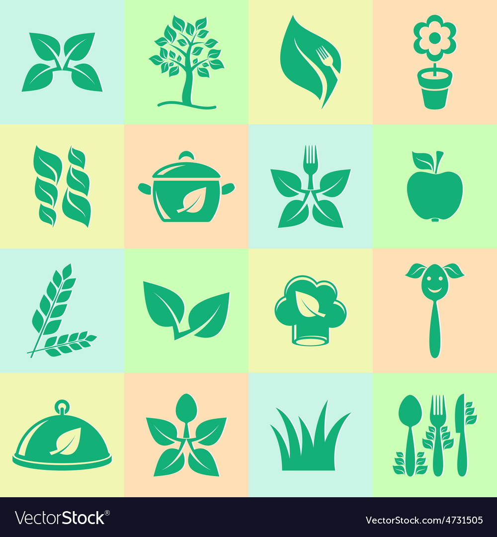 Organic cooking icons vector | Price: 1 Credit (USD $1)