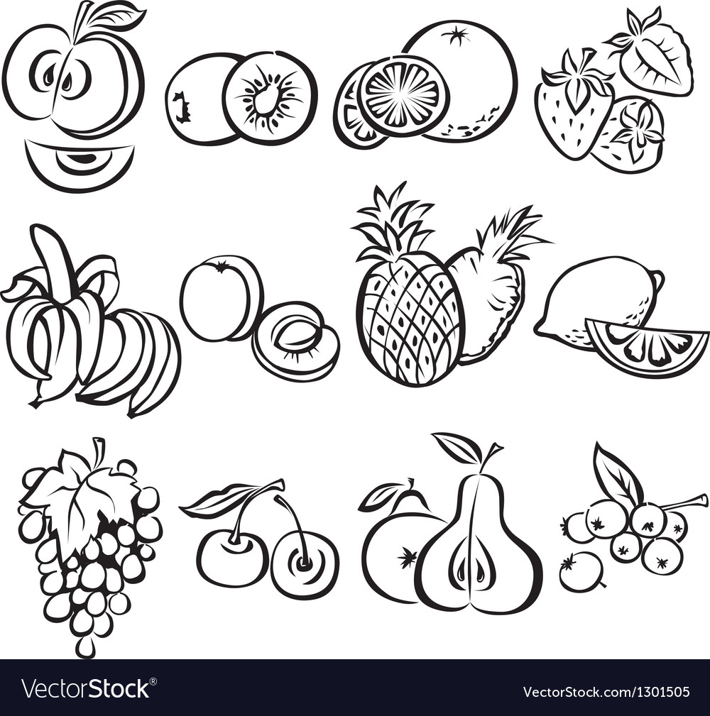 Stylized fruit set on a white background vector | Price: 1 Credit (USD $1)